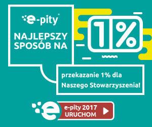 Program do rozliczania PIT online - e-pity